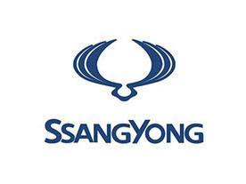 SsangYong Fault Codes list